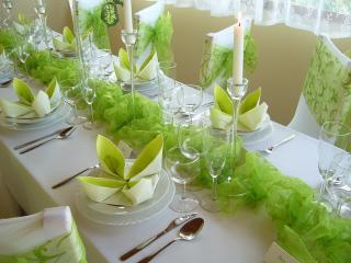 Prenájom štóle na stôl zelená so vzorom